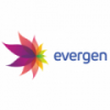 PT. EVERGEN RESOURCES3036